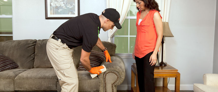 Dublin, GA carpet upholstery cleaning