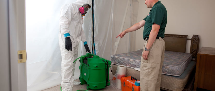 Dublin, GA mold removal process